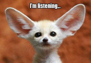 lytte oprigtigt