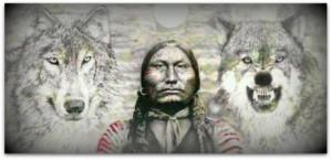 ulven du fodrer cherokee
